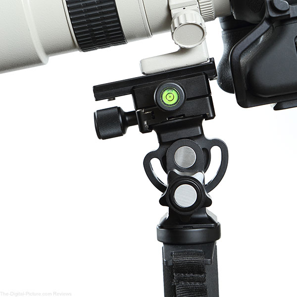 Desmond DMH 01 Tripod Tilt Head with Neewer Bidirectional Quick Release Clamp Close Up