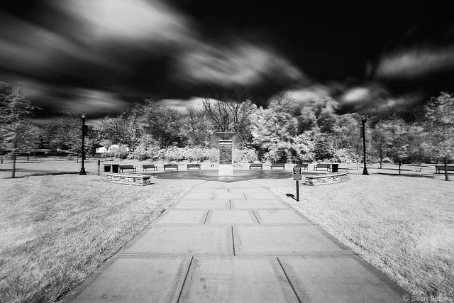 Dogwood Park in Infrared