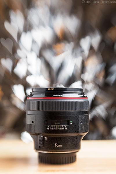 Lensbaby Spark Example Image EF 85mm f/1.2L II USM