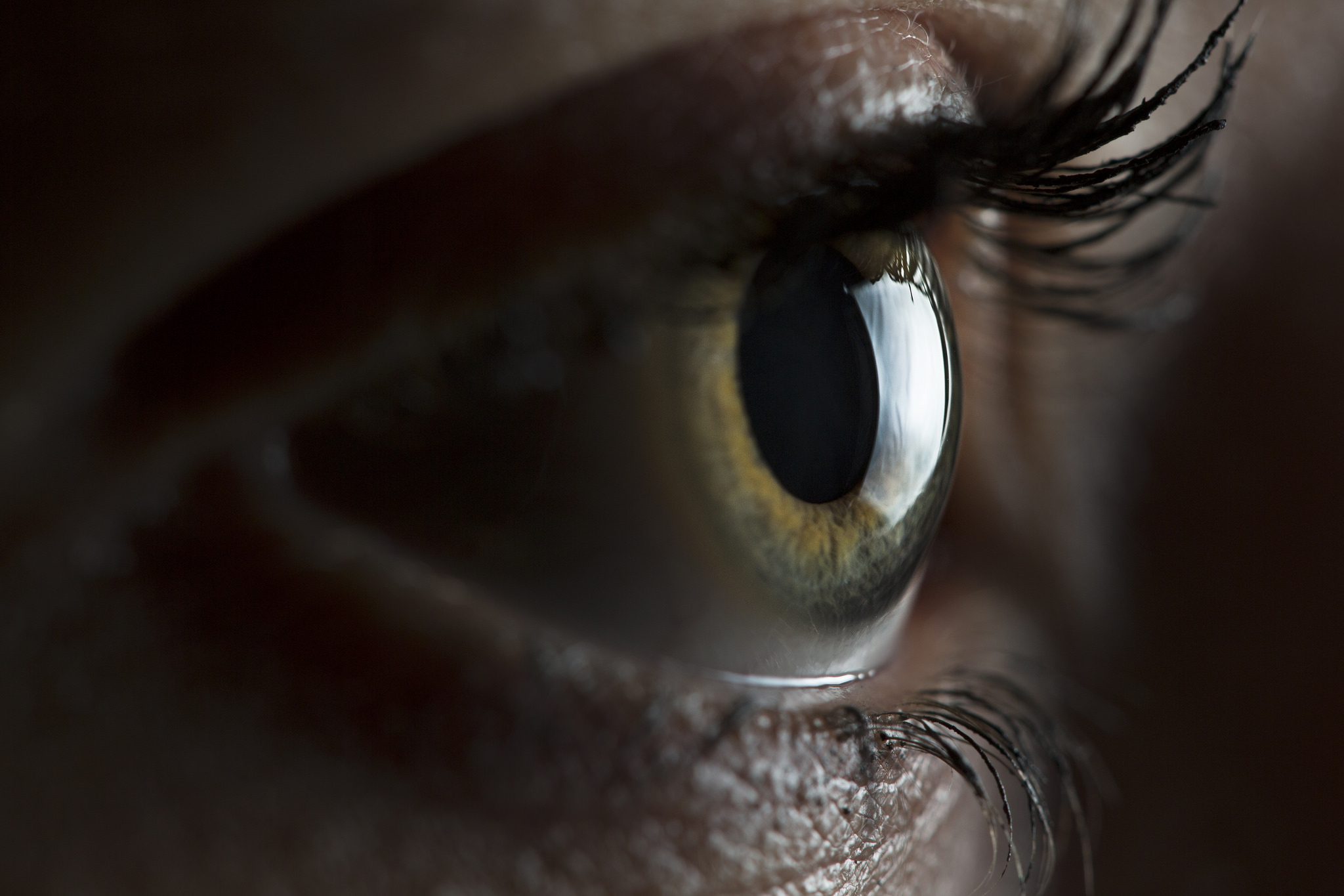 Eye Closeup with 24in Softbox