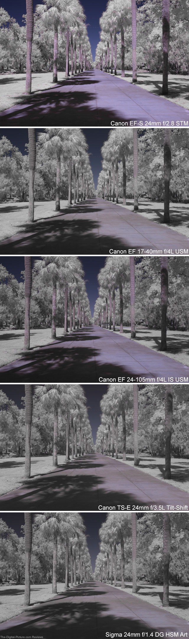 Infrared Lens Comparison at 24mm