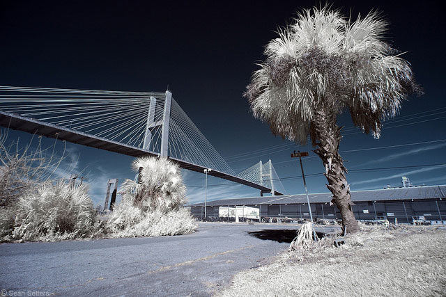 The Talmadge Memorial Bridge and River Street in IR