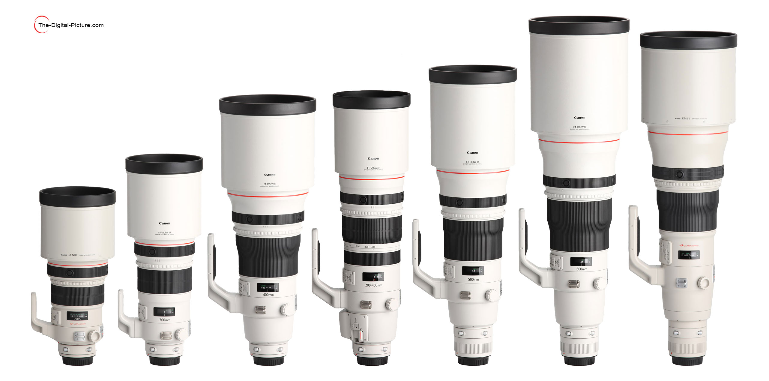 Canon Ef 200 400mm F 4l Is Usm Extender 1 4x Lens Review