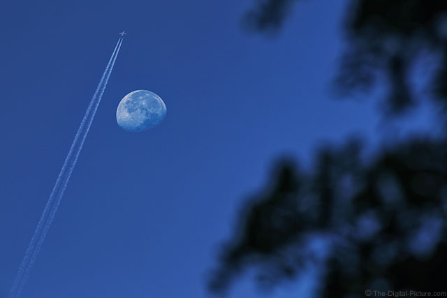 Flying By the Morning Moon