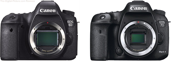 Should I Get the Canon EOS 6D or the EOS 7D Mark II?