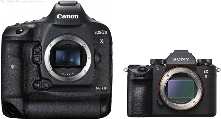 Should I Get the Canon EOS-1D X Mark II or the Sony a9?