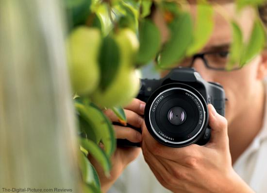 Zeiss Makro-Planar T* 50mm f/2 ZE Lens