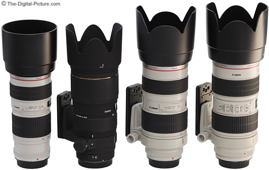 Canon and Sigma 70-200mm Lens Size Comparison with Lens Hoods