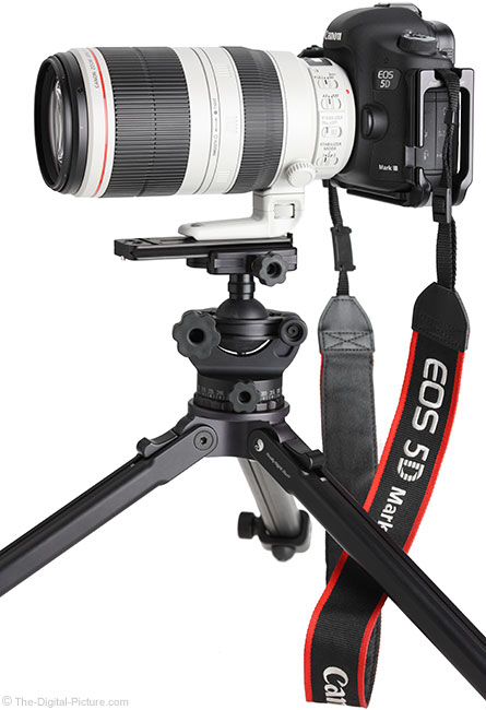 Canon EF 100-400mm L IS II USM Lens – on EOS 5D Mark III on Tripod