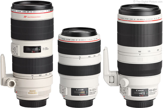Canon EF 100-400mm L IS USM Lens Compared to Similar Lenses
