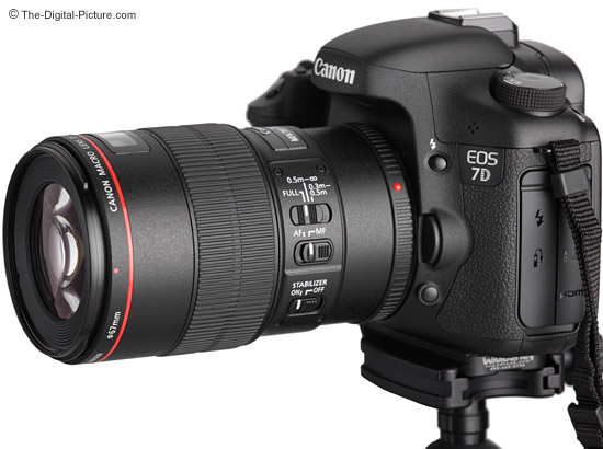 Canon EF 100mm f/2.8L IS USM Macro Lens on Camera images