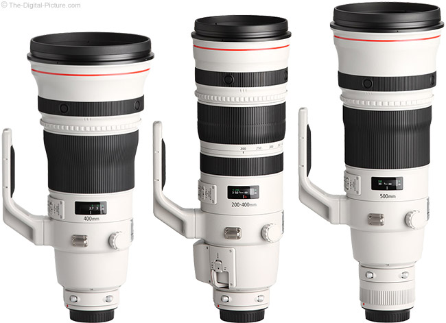 Canon 200-400mm Lens Comparison