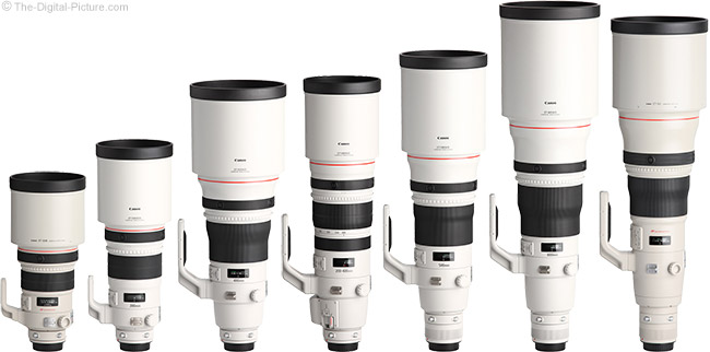 Canon Super Telephoto Lens Comparison - Spring 2013