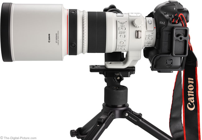 Canon EF 300mm f/2.8 L IS II USM Lens Side View on Canon EOS 1Ds Mark III DSLR Camera