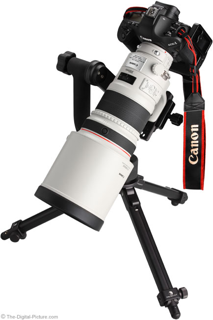 Canon EF 300mm f/2.8L IS II USM Lens Angle View