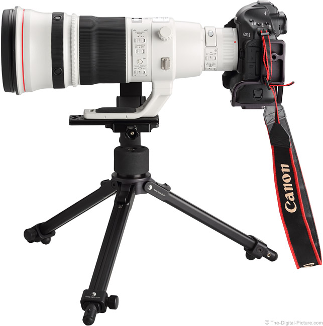 500 L II IS Side View on Canon EOS 1Ds Mark III DSLR Camera