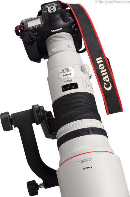 Canon EF 500mm f/4 L IS II USM Lens