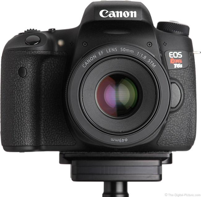 Canon EF 50mm f/1.8 STM Lens on EOS Rebel T6s