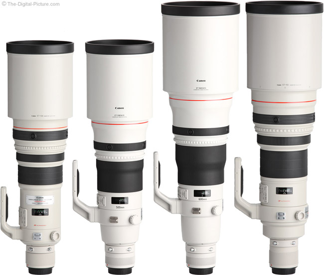 Canon EF 500mm f/4 L IS II USM Lens Compared to other Canon Super Telephoto Lenses with Hoods