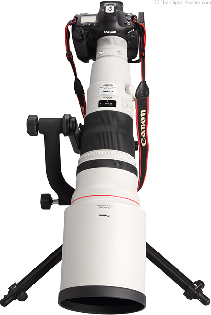 Canon EF 600mm f/4 L IS II USM Lens on Canon EOS 1Ds Mark III DSLR Camera