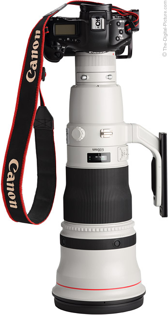 Canon EF 600mm f/4 L IS II USM Lens without hood on Canon EOS 1Ds Mark III DSLR Camera