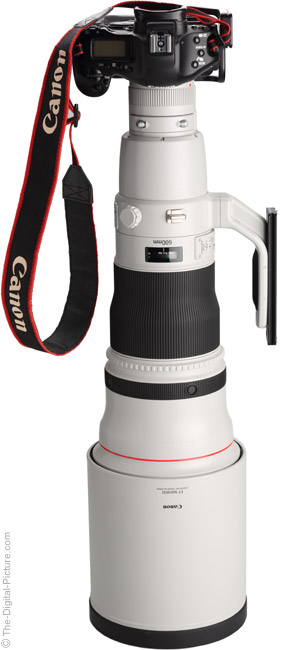 600 L IS II Shown Vertically Mounted on Canon EOS 1Ds Mark III DSLR Camera