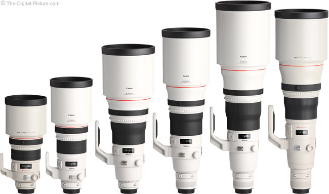 500 f/4 L II IS Compared to other Canon Super Telephoto Lenses with Hoods