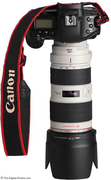 Canon EF 70-200mm f/2.8 L IS II USM Lens On Camera