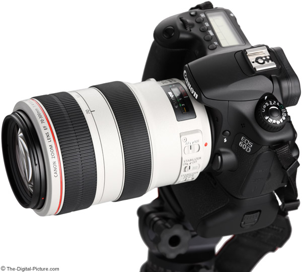 Canon EF 70-300mm f/4-5.6 L IS USM Lens on EOS 60D