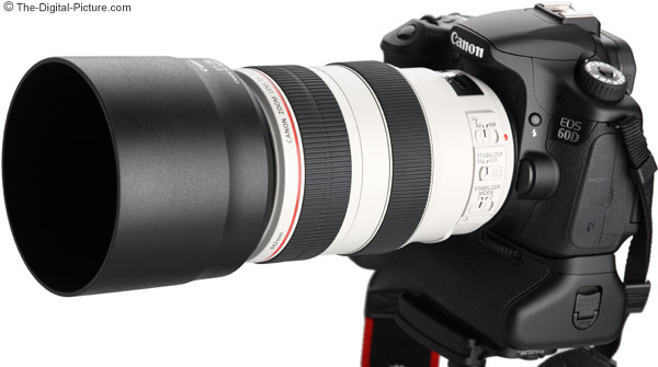 Canon EF 70-300mm f/4-5.6L IS USM Lens with Hood on Camera