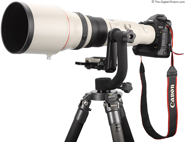 Canon EF 800mm f/5.6 L IS USM Lens mounted on Wimberley Head II and Gitzo Tripod