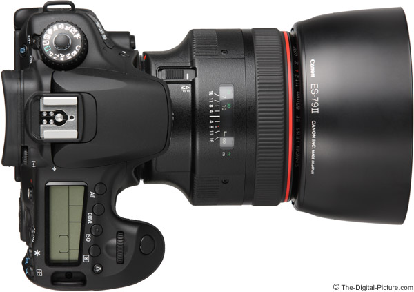 Canon EF 85mm f/1.2 L II USM Lens on EOS 60D - Top View with Hood