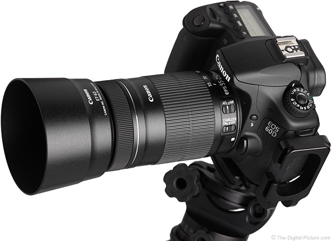 Canon EF-S 55-250mm IS STM Lens on Camera with Hoods