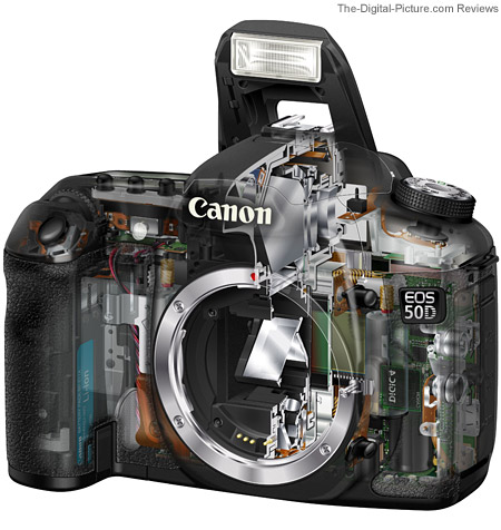 Canon 50D Mounted Lens Comparison