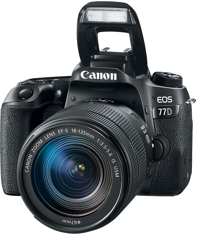 Canon EOS 77D with Flash Up