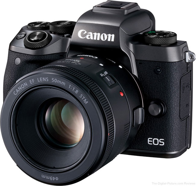Canon EOS M5 with Adapted Lens