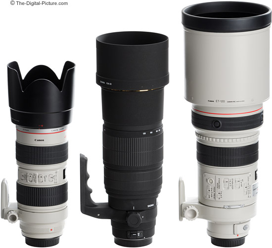 Sigma 120-300mm f/2.8 EX DG HSM Lens compared to 2 Canon f/2.8 Lenses - with lens hoods in place