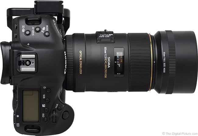 Sigma 105mm f/2.8 EX DG OS HSM Macro Lens Top View with Hood