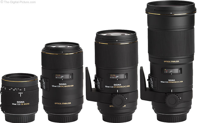 Sigma Macro Lenses Compared