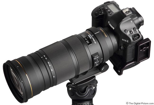 Sigma 120-300 OS on Camera
