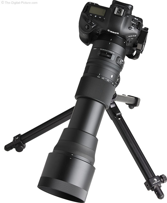 Sigma 150-600mm OS Contemporary Lens on Tripod Extended with Hood