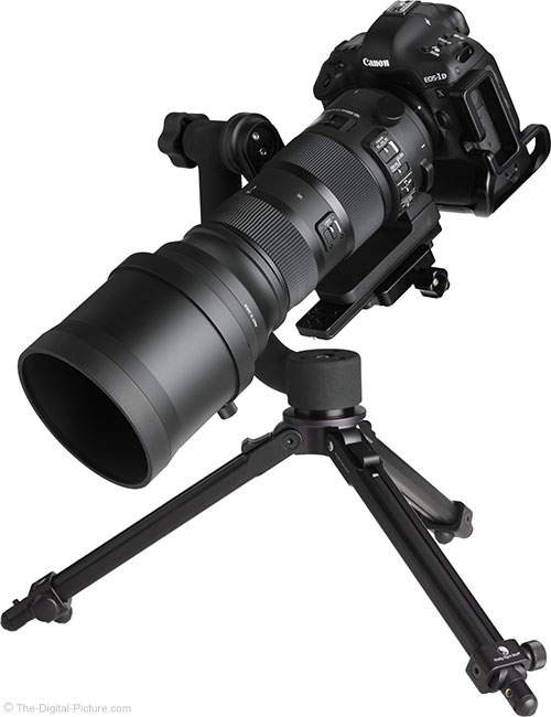 Sigma 150-600mm OS Sports Lens Angle View on Tripod