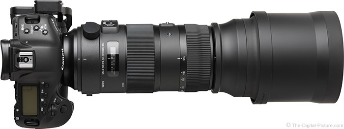 Sigma 150-600mm OS Sports Lens Top View with Hood