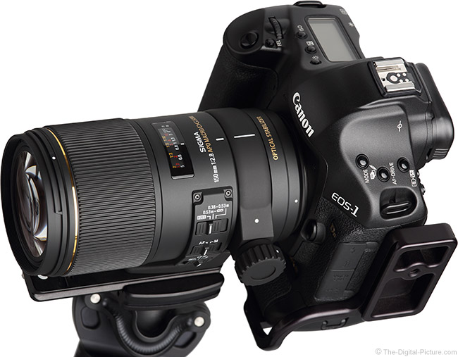 Just Posted: Sigma 150mm f/2.8 EX DG OS HSM Macro Lens Review