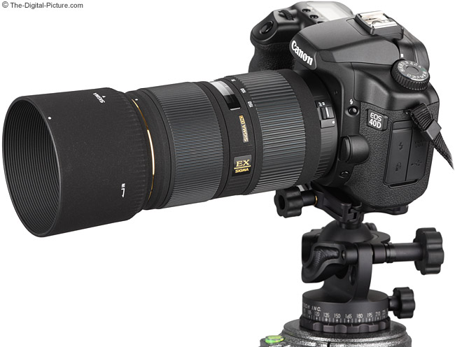 Acratech GV2 Ball Head Mounted on a Canon EOS 40D