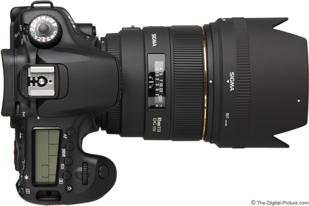 Sigma 85mm f/1.4 on Canon EOS 60D - Top View with Hood