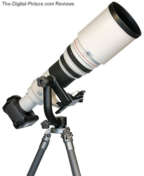 Wimberley Gimbal Tripod Head II in use with super telephoto lens