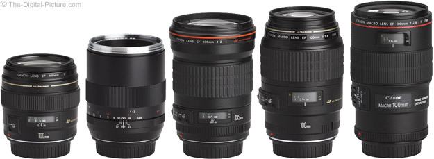 Zeiss 100mm f/2 Makro-Planar T* ZE Lens Compared to Similar Lenses