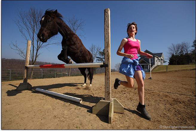 Riderless Horse Jumping