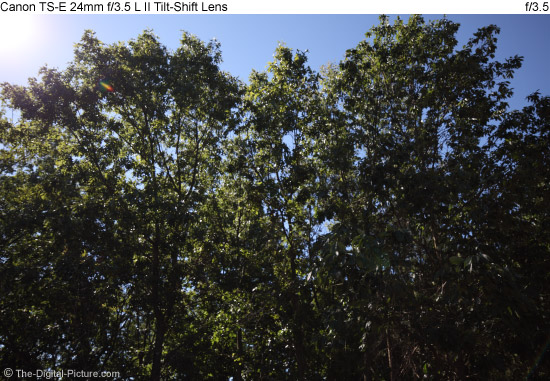 Zeiss 21mm f/2.8 Distagon T* ZE Lens Flare Comparison - Review of High Quality Wide Angle Lenses